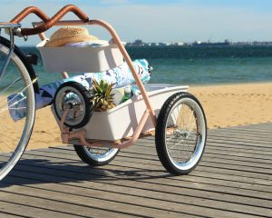 LIVE DIFFERENTLY WITH THE KKDU PLUM BIKE BUGGY
